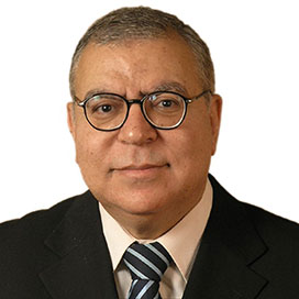 Professor Ahmed Elzawawy